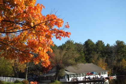 Fall leaves at Lyons Lake