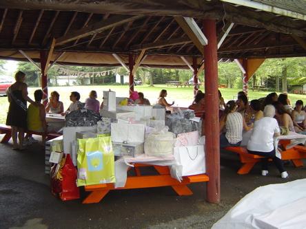 Party Pavillon at Lyons Lake